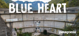 Blue Heart by Patagonia